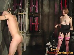 cock dominatrix
